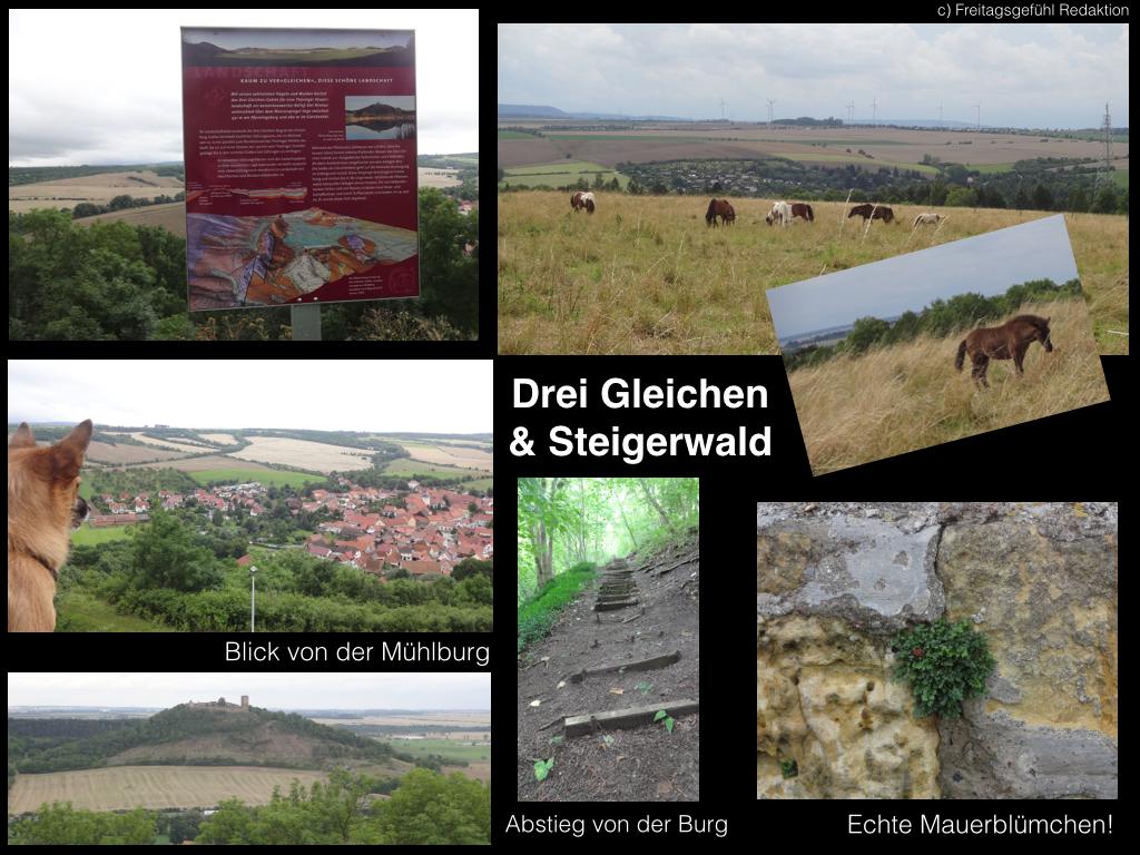 Drei Gleichen und Steigerwald bei Erfurt