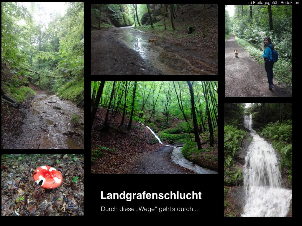 Wandern in der Landgrafenschlucht